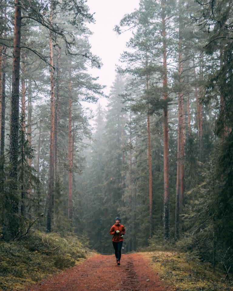 Bild 2 - Jesper Lundberg